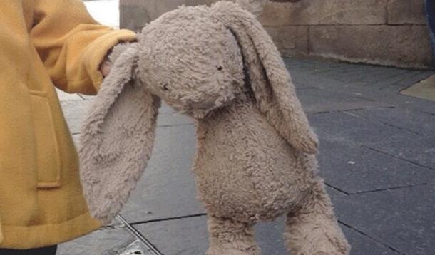 mr-bunny-lost
